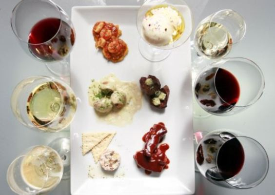 cata de vinos 1