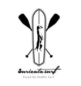 suricata surf