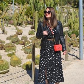 long polka dot dress 2